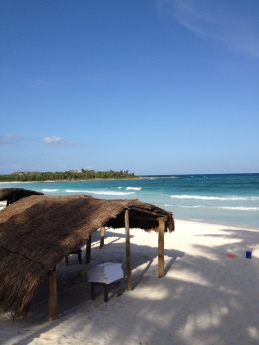 Beach anyone? Take a Palapa for the day and don't move!
