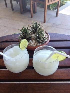 My daily dose of Margarita's