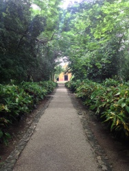 Lush gardens Hacienda San Jose