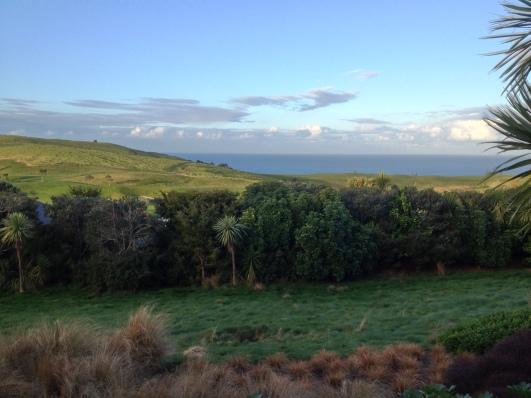 The view at Kauri Cliffs