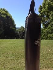 Gym view at Gaia Retreat & Spa