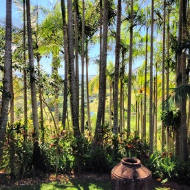 A tropical sanctuary - Gaia Retreat & Spa