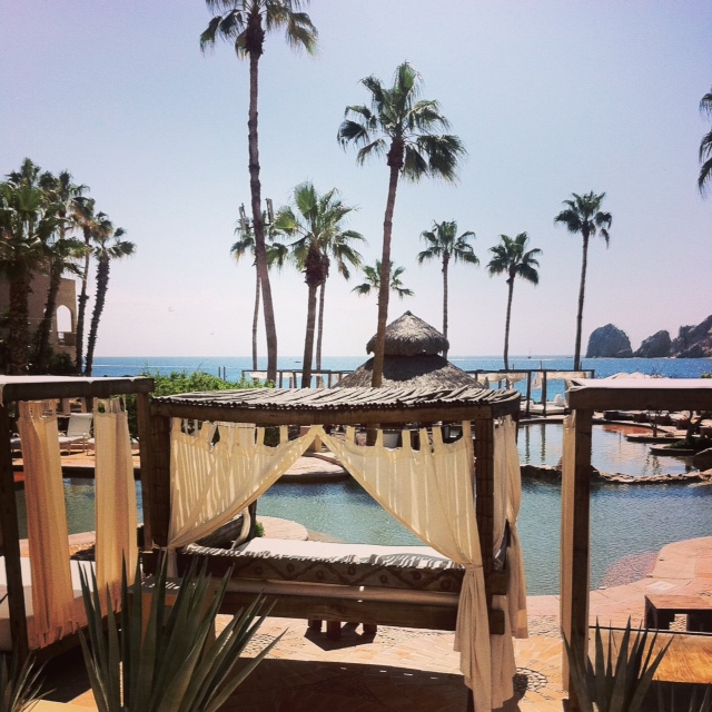 Guest food blogger Nettie Z pool hops in Cabo!