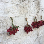 Trulli house detail in Alberobello