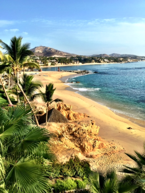 oneonly-palmilla-1